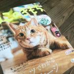 「ねこのきもち」デビュー?!