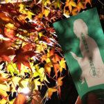 紅葉と風情とスマホの関係〈永観堂へゆく〉