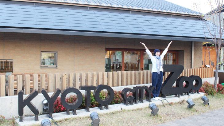 リスノ休日(京都市動物園編)